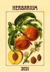 Kalendarz ścienny wieloplanszowy Herbarium 2021 - okładka
