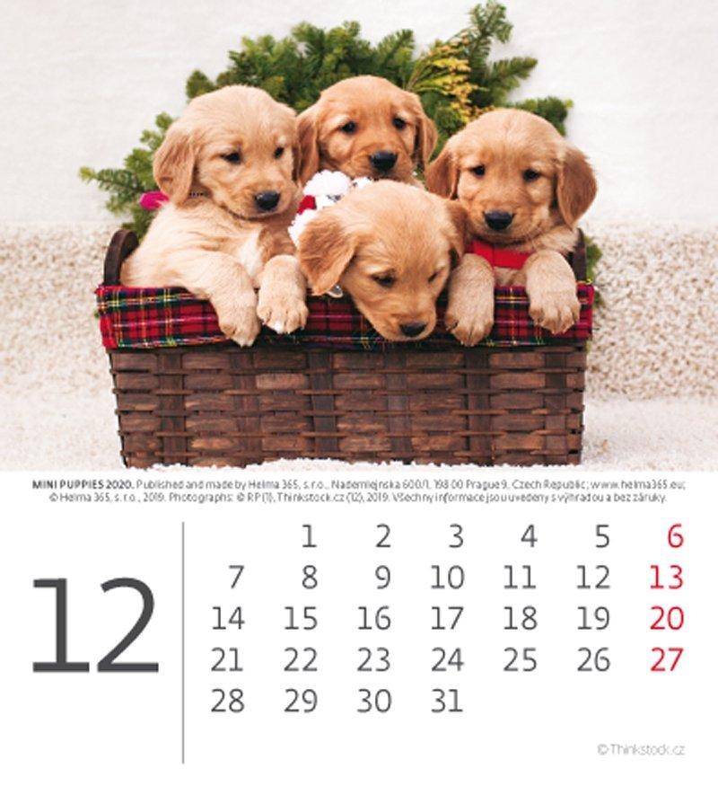 Kalendarz biurkowy mini Pieski 2020 - grudzień
