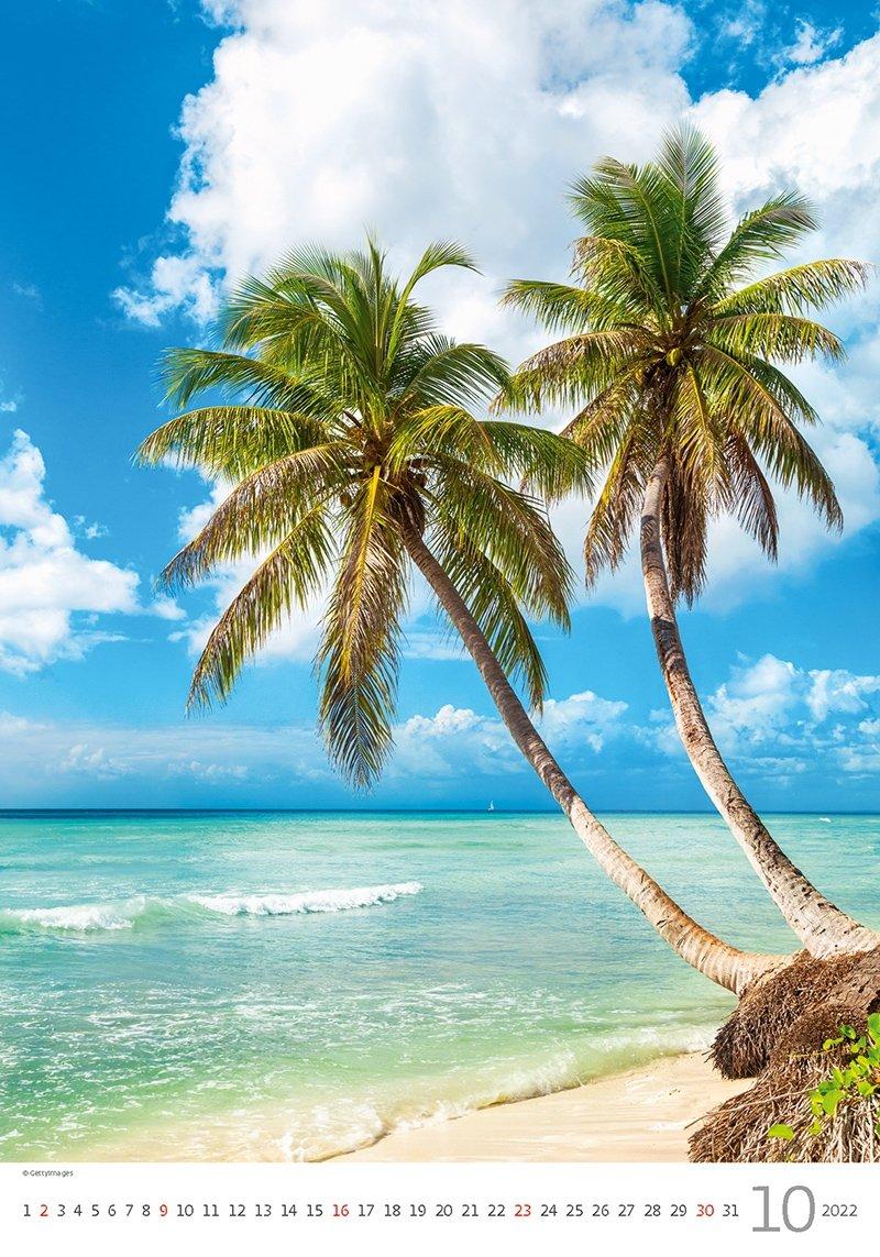 Kalendarz ścienny wieloplanszowy Tropical Beaches 2022 - październik 2022