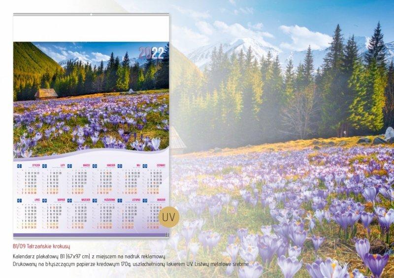 Kalendarz plakatowy B1/09 TATRZAŃSKIE KROKUSY 2022