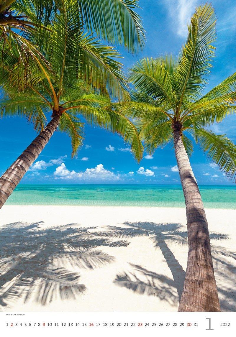 Kalendarz ścienny wieloplanszowy Tropical Beaches 2022 - styczeń 2022