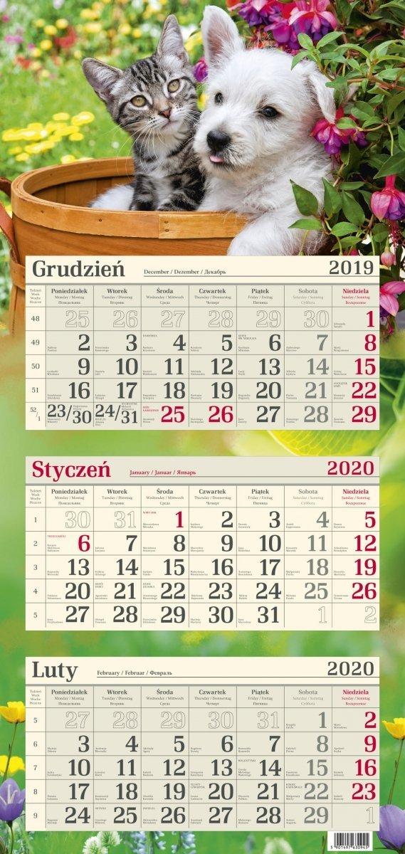 Kalendarz trójdzielny R11 PRZYJACIELE 2020