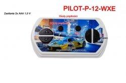 Pilot zdalnego sterowania w technologii 2.4 Ghz do pojazdów WXE