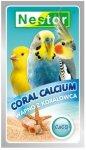 Nestor 2381 Coral Calcium 40g