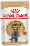 Royal 240820 British Shorthair saszetka 85g