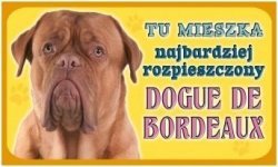 Tabliczka 2127 Dogue de bordeaux
