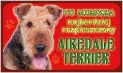 Tabliczka 1946 Airedale Terrier