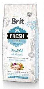 Brit Fresh 0779 Adult Large 12kg Fish & Pumpkin