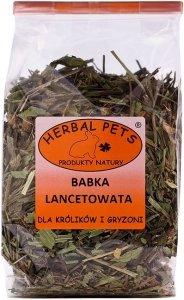 Herbal Pets 4678 Babka Lancetowata 70g