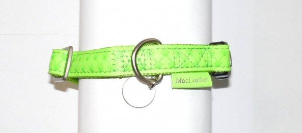 Zolux 435171ANI Obroża Mac Leather 15mm seledyn