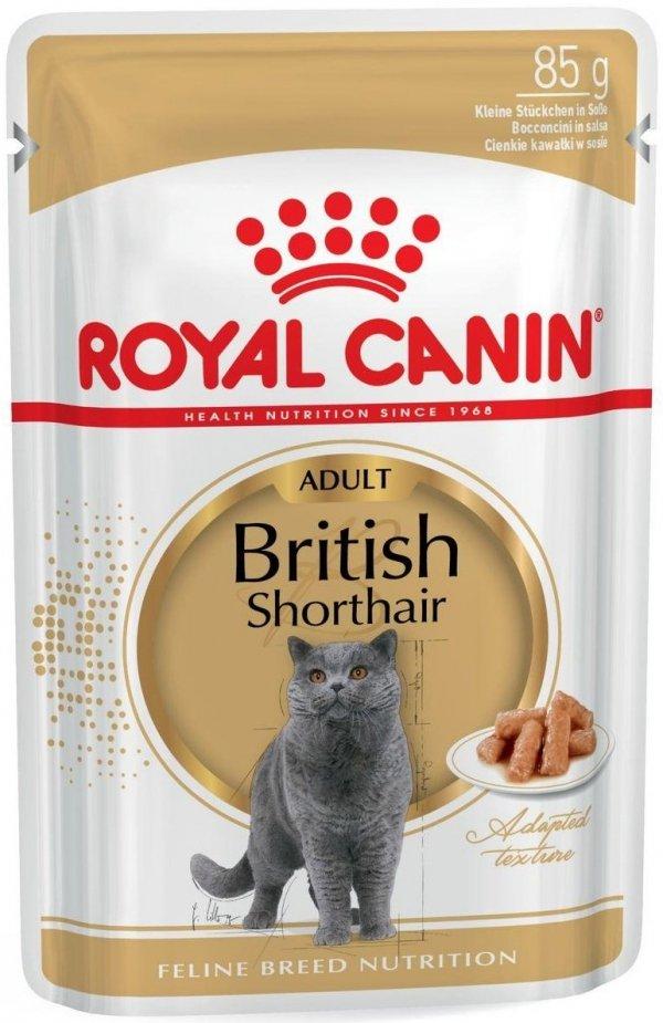 Royal 240820 British Shorthair saszetka 85g