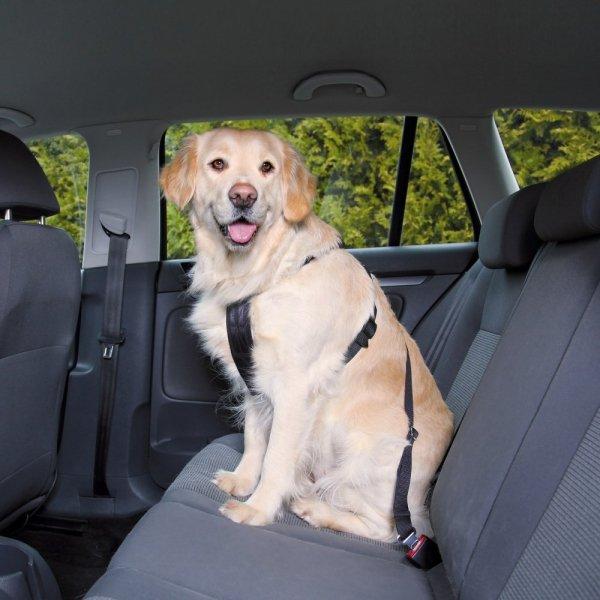 Trixie 1292 Szelki samochodowe dla psa L