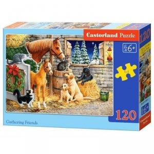 Puzzle 120el. gathering friend