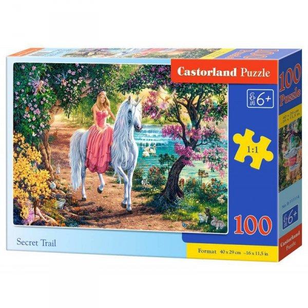 Puzzle 100 secret trail