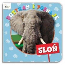 Dotykam i Poznaję Słoń