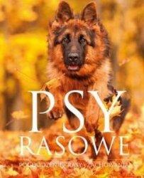 Psy rasowe Pochodzenie Rasy Zachowania  Izabela Przeczek