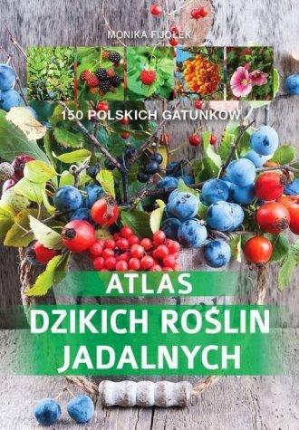 Atlas dzikich roślin jadalnych Monika Fijołek