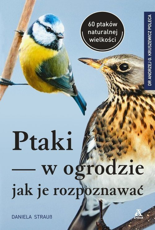 Ptaki w ogrodzie Jak je rozpoznawać Daniela Strauß
