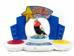 Digibirds na Scenie Śpiewa Gra Musical