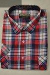 Koszula z kory czerwona w białą kratkę nadwymiar.