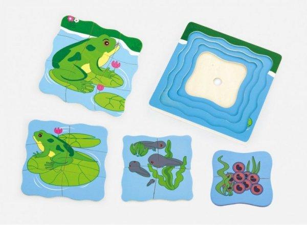 Puzzle - jak rośnie żabka Viga