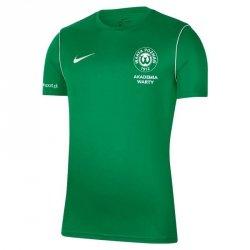 Koszulka Treningowa Nike Warta Poznań S668522 L zielony