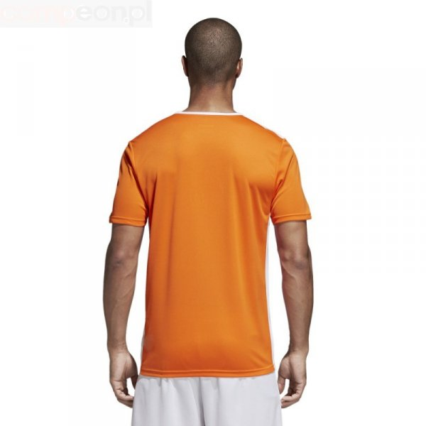 Koszulka adidas Entrada 18 JSY CD8366 pomarańczowy S