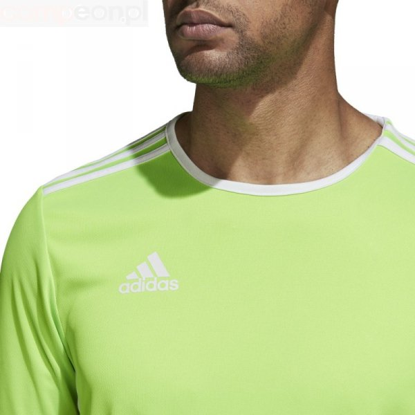 Koszulka adidas Entrada 18 JSY CE9758 zielony 140 cm