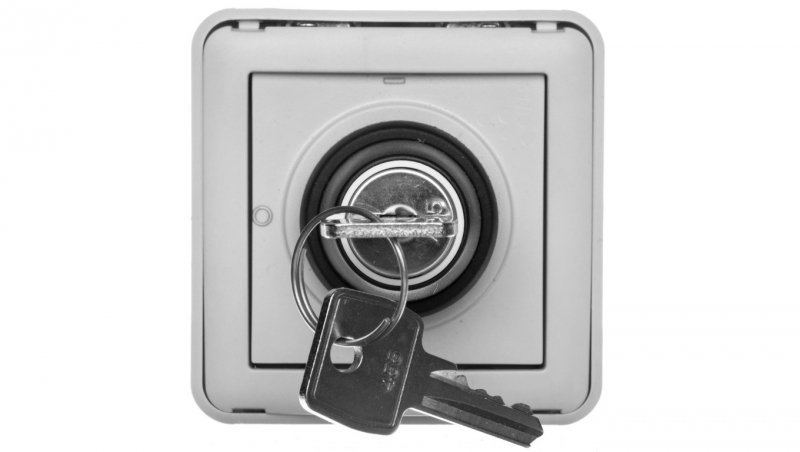 Legrand PLEXO55 Łącznik z kluczykiem 3 pozycje szary 069535