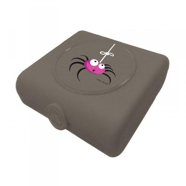 Pojemnik na przekąski i kanapki szary - Pająk - Spider