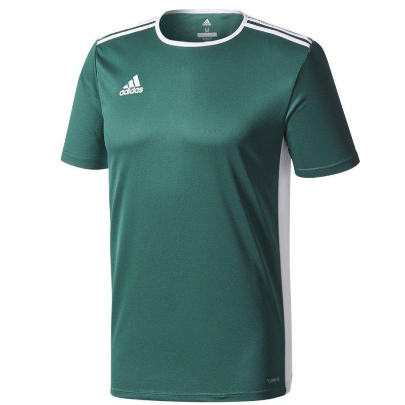 Koszulka adidas Entrada 18 JSY CD8358 zielony L