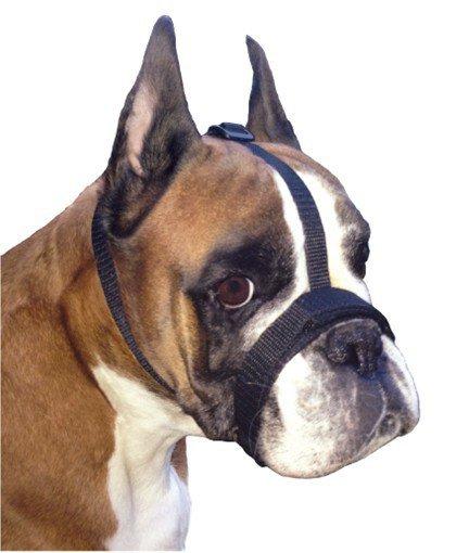 Grande Finale Kaganiec dla psa pekińczyk rozmiar 2 (15-24cm)