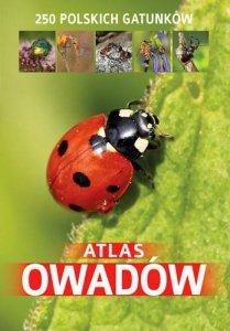 Atlas owadów 250 polskich gatunków