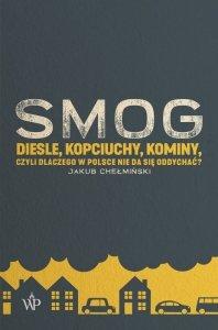 Smog diesle kopciuchy kominy czyli dlaczego w Polsce nie da się oddychać