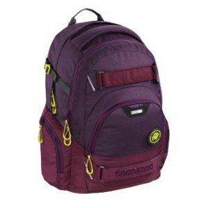 Plecak Carrylarry 2, Kolor: Berryman System Matchpatch
