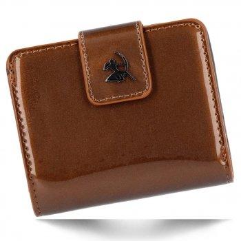 Elegantní Dámská Peněženka Diana&Co Pouzdro na Karty Hnědá