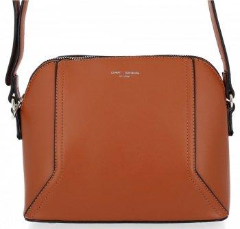 Elegantné dámske tašky messenger pre všetky príležitosti od David Jones Ryšavka