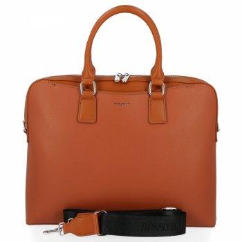 Elegantné dámske taška od David Jones Ryšavka