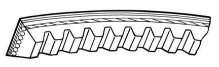 Pasek klinowy 10 x 1213