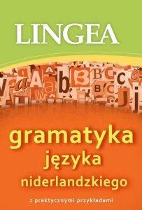 Gramatyka języka niderlandzkiego z praktycznymi przykładami