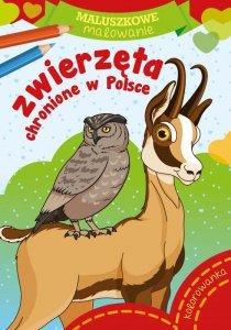 Zwierzęta chronione w Polsce. Maluszkowe malowanie