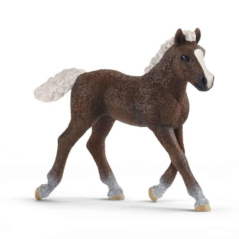Figurka Koń Szwedzki Źrebię [Schleich]