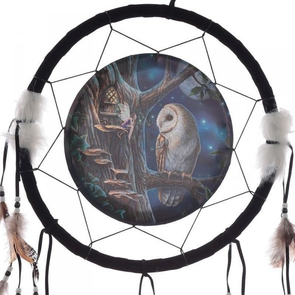 """indiański łapacz snów z obrazkiem Lisy Parker """"Sowa i Leśna Wróżka"""""""