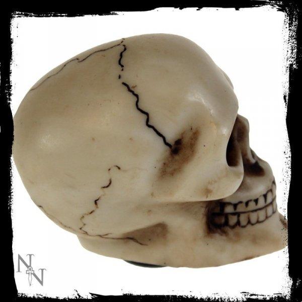 gałka - uchwyt do dźwigni zmiany biegów w kształcie czaszki