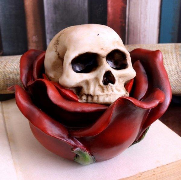 Czaszka w Róży - otwierana szkatułka