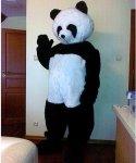 Wypożyczenie stroju chodzącej maskotki - Miś Panda