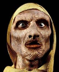 Maska klejona na twarzy - Mumia Deluxe
