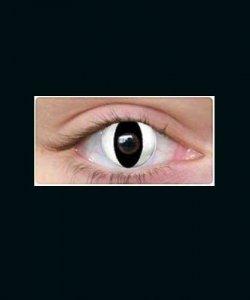 Szkła kontaktowe - Black Cat