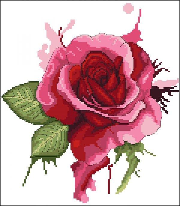 M2210 - Róża akwarela