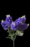 Bukiet bzu  x 7 kwiatów  MIX - 18Y169